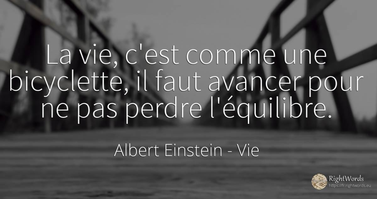 La Vie C Est Comme Une Bicyclette Il Faut Avancer Pour Citation Par Albert Einstein