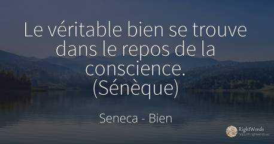 Citations Par Seneca Sur Bien